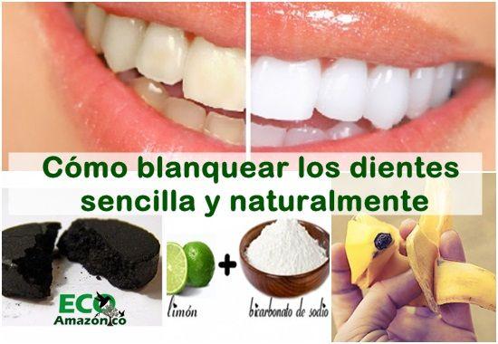 C mo blanquear los dientes sencilla y naturalmente eco amaz nico - Como blanquear los dientes en casa ...