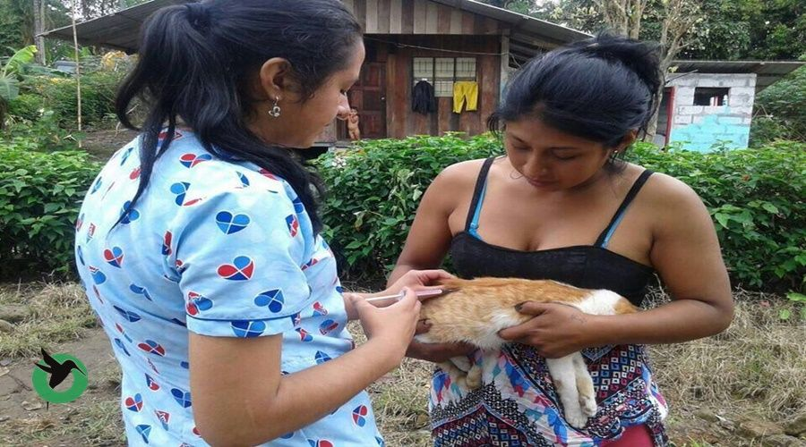 En Palora campaña de vacunación antirrávica