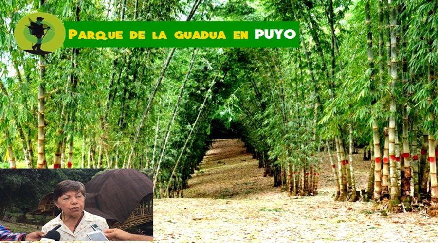 Parque de la Guadua Puyo