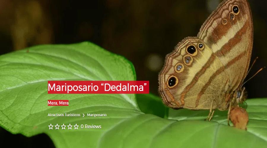 "Estación Biológica ""Pindo Mirador"""