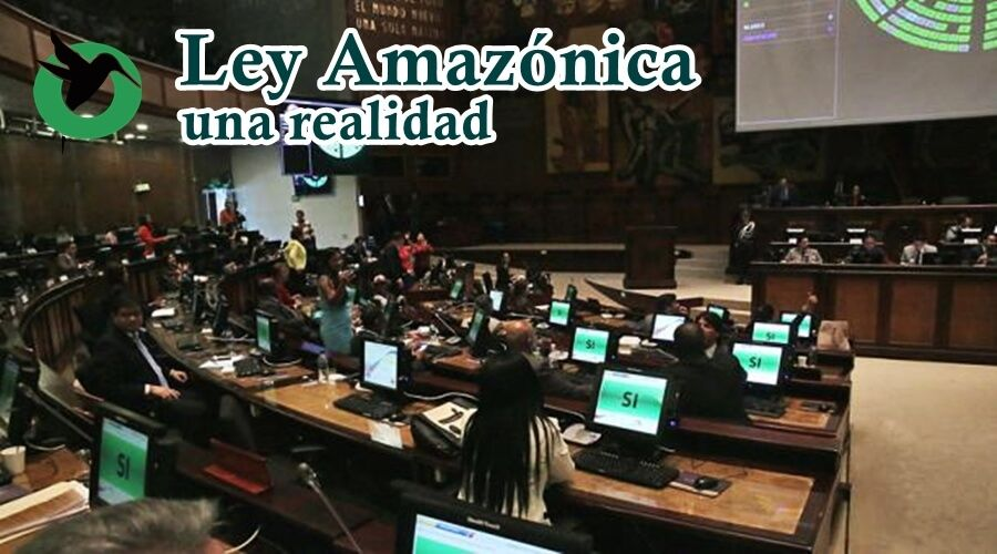 La Amazonia ahora tiene Ley.