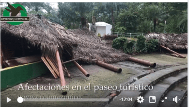 Afectaciones en el Paseo Turístico por fuertes vientos