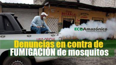 Denuncian al MSP por aparente mal uso de la fumigación de mosquitos