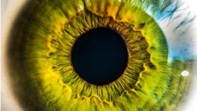Cirugía podría devolverles la visión a los no videntes