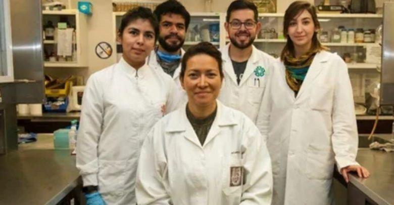 Investigadora mexicana logra eliminar el Virus del Papiloma Humano