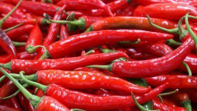 Estudio italiano revela que comer ají podría reducir el riesgo de muerte