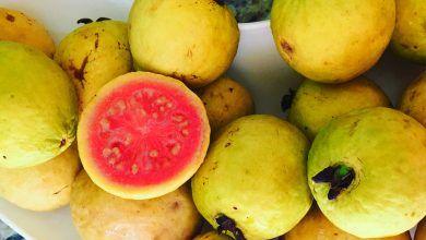 10 razones para comer guayaba