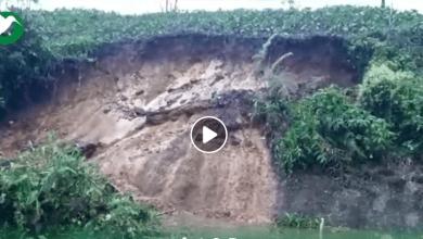 Reporte de un derrumbe en la vía la Tena