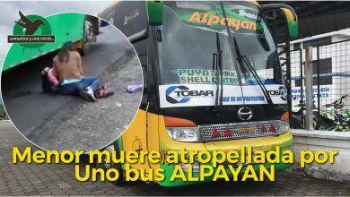 Alpayan atropelló a una menor en la Moravia