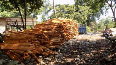 Deforestación ilegal en territorio Achuar
