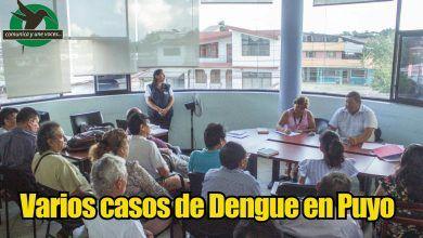 Aumento de casos de dengue en Puyo