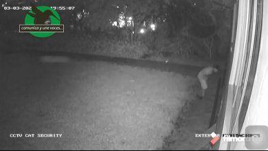 Hurto en una vivienda de Puyo captado en cámaras de Seguridad