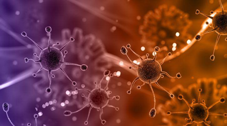 Por qué no todos los virus son malos para nuestra salud