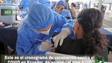 El Ministerio de Salud hizo público este domingo su cronograma de vacunación del plan 9/100 de acuerdo a las tres fases: Salvamos Vidas, Nos Cuidamos, Nos Reactivamos, según la ministra de Salud Pública, Ximena Garzón. Según la planificación, este proceso se realizará entre el 31 de mayo y 15 de julio de 2021. Desde el lunes 31 se completarán las segundas dosis a quienes ya recibieron una primera inoculación. Y se vacunará a mayores de 80 años que aún no han recibido la vacuna. El Ministerio ha señalado que en ese periodo se dará prioridad a las personas que tengan ese rango de edad, pero con condiciones graves, discapacidades y enfermedades crónicas. Las autoridades han habilitado 950 brigadas y más de 300 centros de vacunación distribuidos en las 24 provincias del país. Desde este lunes 31 de mayo hasta el 6 de junio se seguirá con las vacunaciones de segunda dosis a quienes se vacunaron la primera semana de mayo. Y hay un calendario para vacunaciones de primera dosis de acuerdo a rango de edades. Segunda dosis para vacunados anteriores Segunda dosis Vacunados de primera dosis Lunes 31 de mayo Personas que se vacunaron el 01 de mayo Martes 1 de junio Personas que se vacunaron el 02 de mayo Miércoles 2 de junio Personas que se vacunaron el 03 de mayo Jueves 3 de junio Personas que se vacunaron el 04 de mayo Viernes 4 de junio Personas que se vacunaron el 05 de mayo Sábado 5 de junio Personas que se vacunaron el 06 mayo y REZAGADOS Domingo 6 de junio Personas que se vacunaron el 07 mayo y REZAGADOS Vacunación de primera dosis Primera dosis Ciudadanos sin vacunar Lunes 31 de mayo Mayores de 80 años Martes 1 de junio 79 y 78 años Miércoles 2 de junio 77 y 76 años Jueves 3 de junio 75 y 74 años Viernes 4 de junio 73 y 72 años Sábado 5 de junio REZAGADOS Mayores de 72 años Domingo 6 de junio REZAGADOS Mayores de 72 años El Gobierno ha implementado un link de consulta para conocer el lugar de vacunación contra el COVID-19. Seguimiento de Fase 1 Fase 1: Del 31 de mayo al 