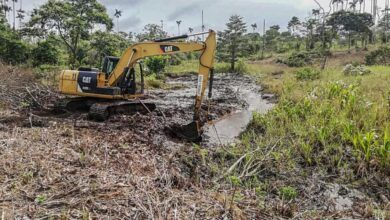 ¡Pregfectura construye sistemas de drenaje en la parroquia 10 de Agosto!